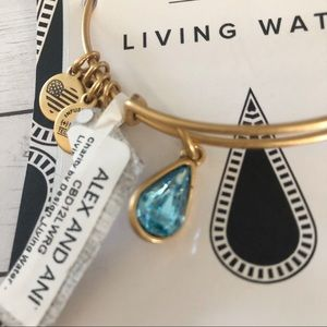 🆕Alex and Ani living water charm bracelet